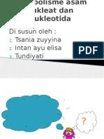 PPT-METABOLISME-NUKLEAT.pptx