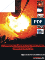 COMBUSTIÓN INDUSTRIAL DEL GAS NATURAL.pdf