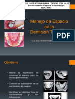 CLASE_16_Mantenedores_de_Espacio_PDF.pdf