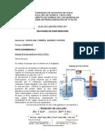 Informe_Laboratorio_Oxido-reduccion_2009 (1).doc