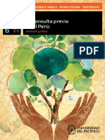 DI6 La consulta previa en Perú