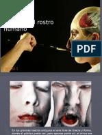 45130_179788_El Rostro Como Máxima Expresión