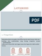 LABIOPALATOSKISIS ppt