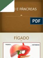 Fígado e Pâncreas