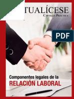 CP 06 2016.Componentes Legales Relacion Laboral