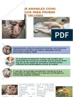 Uso de Animales Como Modelos Para Probar Vacunas