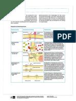 Membranproteine Übersicht
