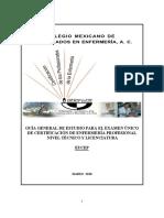 GUIACOMLEmarzo2010.pdf