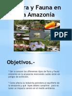 Presentacion Flora y Fauna en La Amazonia