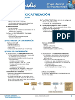 ANEXO_5._CICATRIZACION_Y_HERIDAS