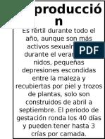 Teporingos.docx