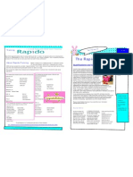 Rapido Training Learner Spring Newsletter Part 1- 2010