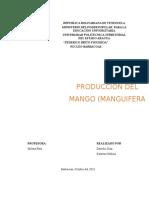 Producción de Mango