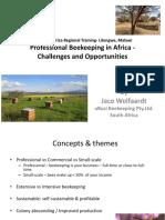 Doc 20160415 Regional Training Southern 2 Beekeeping Africa Malawi Training En