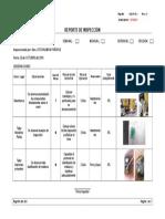 Modelo de inspeccion