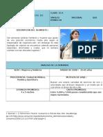 Ficha Hux Demanda