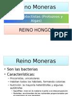 Reinos Moneras, Protoctistas y Hongos- 1º ESOB