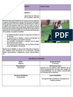Ficha Técnica Mazunte Demanda