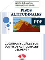 Pisosaltitudinales6to 110118204215 Phpapp02 (1)