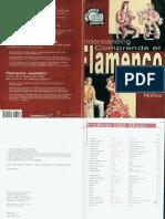 Faustino Nuñez -  Understanding Flamenco.pdf