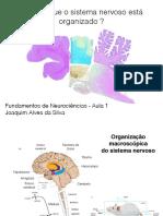 Aula 1 e 2 Organizac a o Do Sistema Nervoso Slides