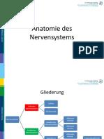 Biopsychologie - Anatomie Des Nervensystems 20062015 - Praesentation