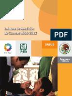 Informe IMSS 2006 2012
