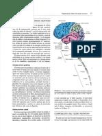 2 SN.pdf