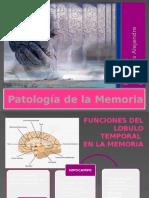 Patologia de La Memoria