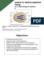 Ventricular System Arslan&Wiranowska Post 1