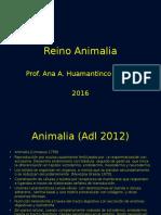 4 Reino Animalia