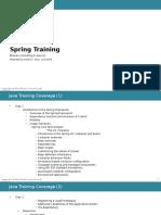 Training Spring.pptx