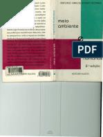 Geografia e Meio AmbienteRobert Moraes.pdf