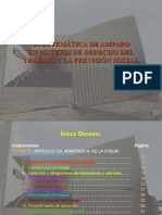 GUIA_TEMATICA DE AMPARO.ppt
