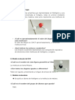 informe-I