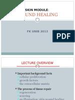 Wound Healing 2013