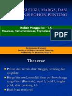 Kuliah ke 15 Dendrologi.pdf
