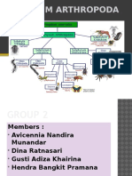 Group 2 Arthropoda