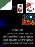 Aparato Cardiovascular (a y F)