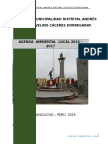 Agenda Ambiental Local Andrés Avelino