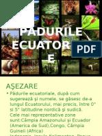 Pad u Rile Ecuatorial e