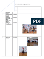 Un Model Pt Raport(1)