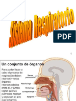 13.- SISTEMA RESPIRATORIO.ppt