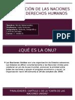 Organización de Las Naciones Unidas y Derechos Humanos