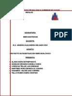 PROYECTO MERCADOLÓGICO.docx