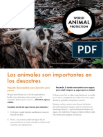 14-007_wspa_disaster_pack_dogs_v3-spa.pdf