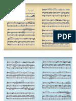 Ponchielli - Piccolo Concertino Op. 75