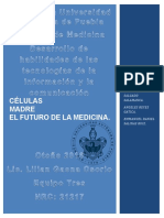 Celulas Madre El Futuro de La Medicina.