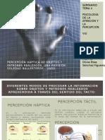 Percepción Háptica de Objetos y Patrones Realzados (2)