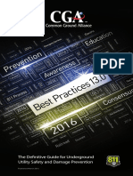 CGA BestPractices13.0 Final